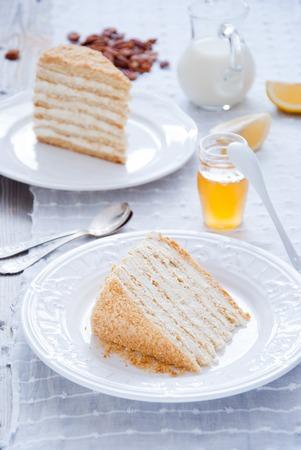 Honey cake with vanilla cream Stock Photo