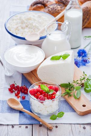 Ricotta, panna acida, formaggio, panna, yogurt e latte Archivio Fotografico