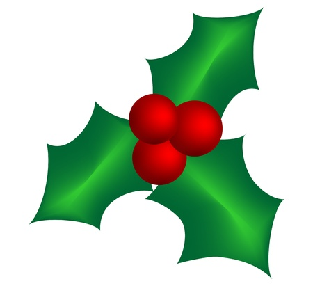 mistletoe Stock Vector - 11412777