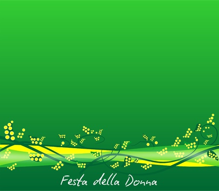 mimosa: Vector background with Mimosa for Women