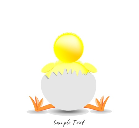 Background and Chick Stock Vector - 11992273