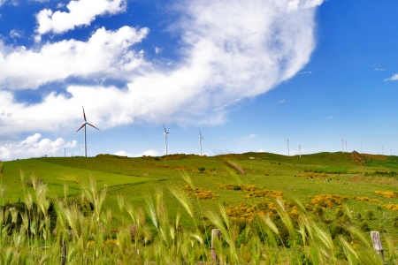 Clean and renewable energy photo