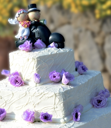 Wedding cake with bride and groom Stock Photo - 15081651