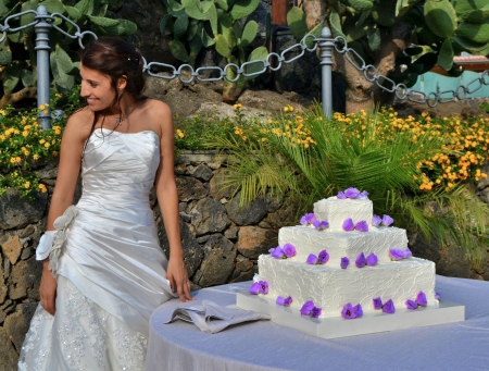 Smiling bride with wedding cake photo