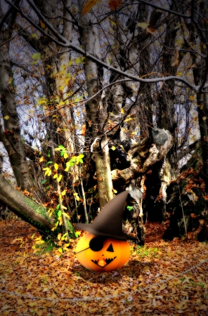 Halloween background with pumpkins and trees Stock Photo - 15716328