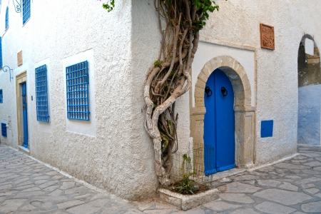 Tunisian architecture Stock Photo - 17241742