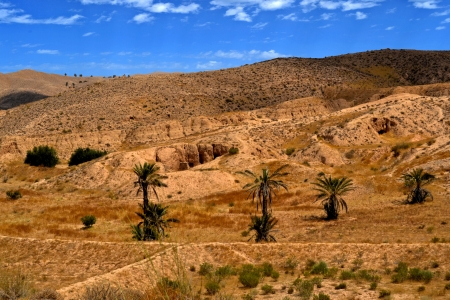Panorama of the desert village of Matmata - Tunisia, Africa photo