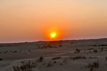 Sandy desert of the Sahara - Tunisia, Africa photo