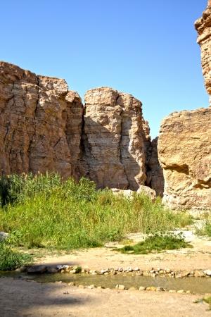 Oasis Tamerza - Tunisia, Africa photo