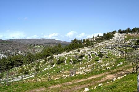 region sicilian: Landscape, Palazzolo Acreide - Province of Syracuse, Sicil