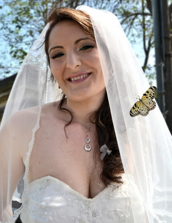 Bride with colorful butterfly resting on the veil photo