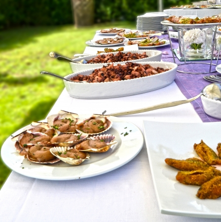 Banquet with deliciously prepared dishes Stock Photo - 20224864