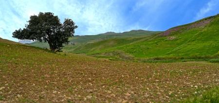 paisaje mediterraneo: Natural paisaje mediterr�neo - Sicilia