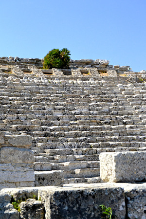 Ancient amphitheater of Segesta Valley - Trapani, Sicily photo
