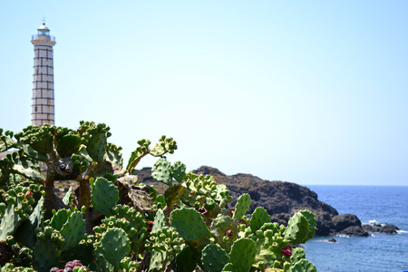 Wonderful rocky coast of the island of Ustica - Sicily photo