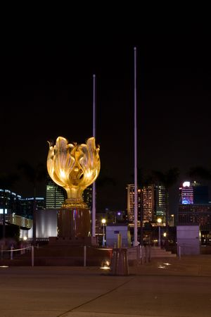 Golden Bauhinia Square At Night with no peoples photo