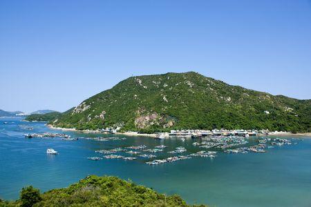 atraer: Motivos de desove de peces en Hong Kong