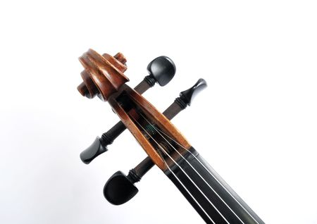 Details of violin head photo