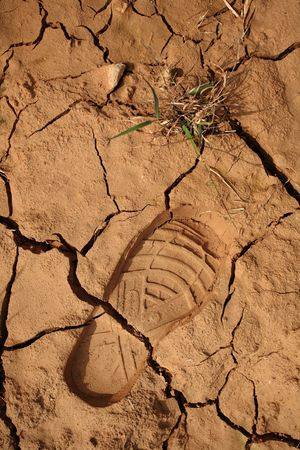 a step print and braird on dried land photo