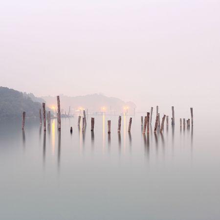 gloomy: wood in water