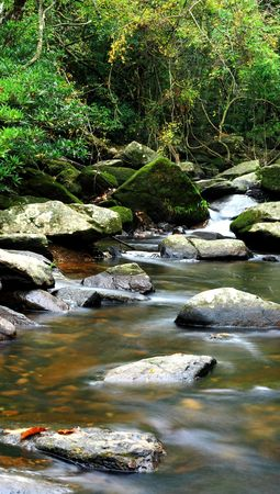 beautiful water spring in forest, long exposure  photo