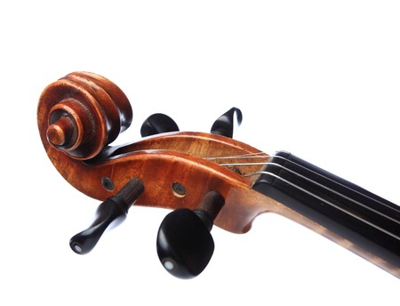 violin head photo