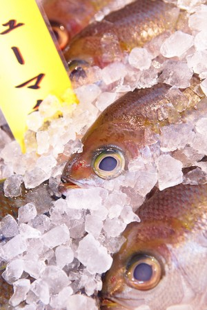 fish for sell in japan fish market Stock Photo - 7510828