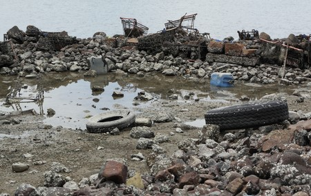 polluted river: garbage on coast