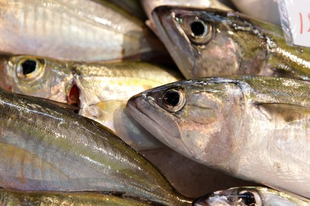 fish for sell in market Stock Photo - 7785155