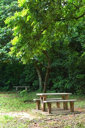 picnic place photo