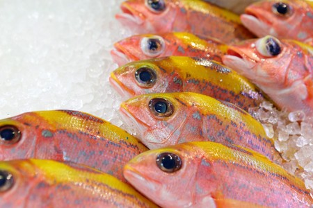 fish for sale in market Stock Photo - 7887964