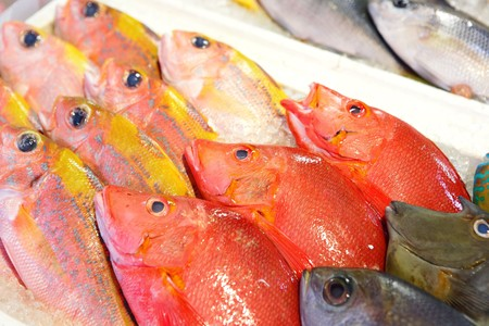fish for sale Stock Photo - 7887978