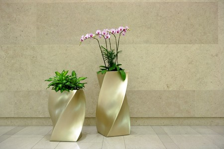 beautiful orchid in lobby photo
