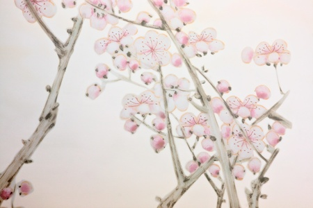 chinese style cherry tree background photo