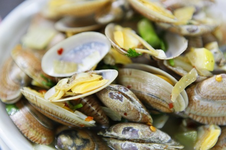 bivalve: fired clams in chinese style Stock Photo