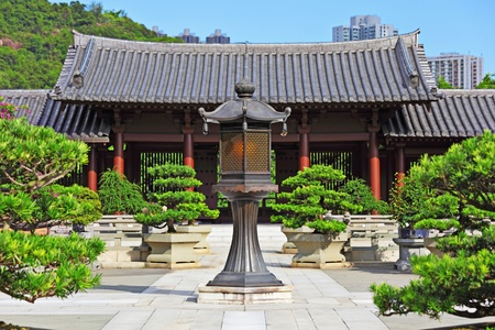 asian house plants: Chinese traditional garden