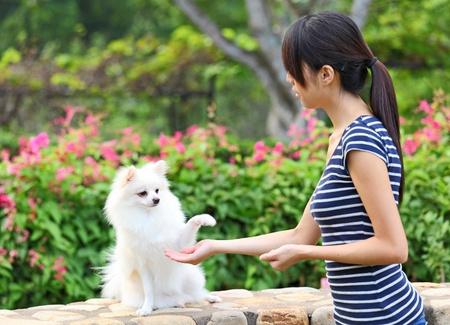 woman training her dog photo