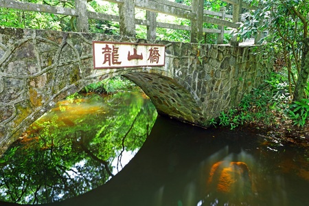 Bridge in forest photo