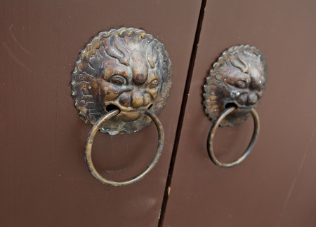 lion door lock photo