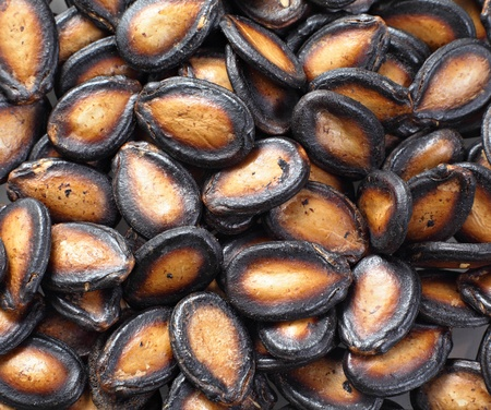 black melon seed photo
