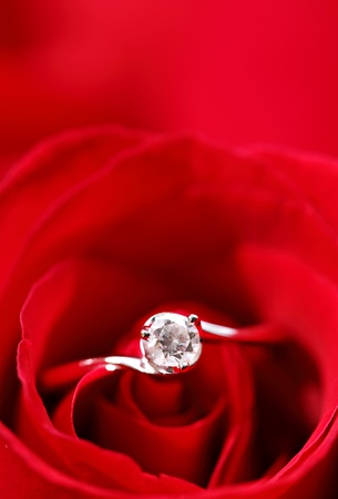 single object: rose with ring