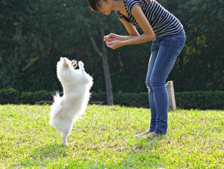 mujer de la formación de su perro