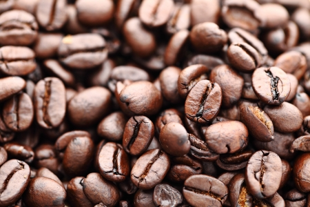 colombian food: Coffee beans
