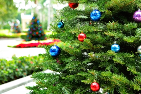 balls decorated: Christmas tree in garden Stock Photo