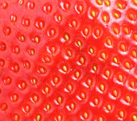 macro of strawberry texture photo