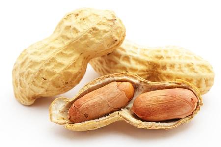 close up of peanut photo