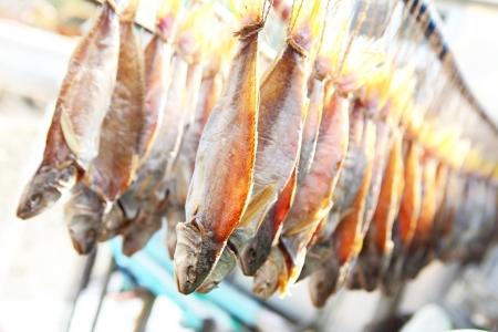 dry salt fish  Stock Photo - 17212662