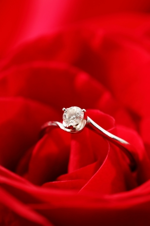 rose and ring photo