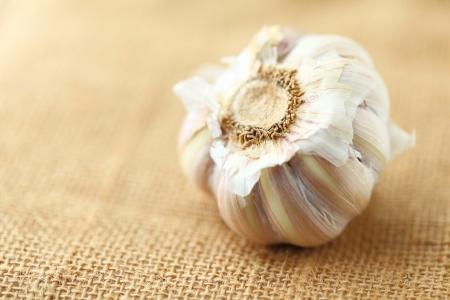 garlic  Stock Photo - 18437080