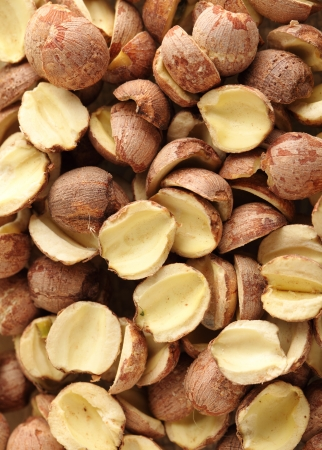 and traditional chinese medicine: Fox nuts, traditional chinese medicine Stock Photo